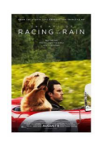 Art of Racing in the Rain movie