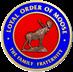 Order of Moose Logo